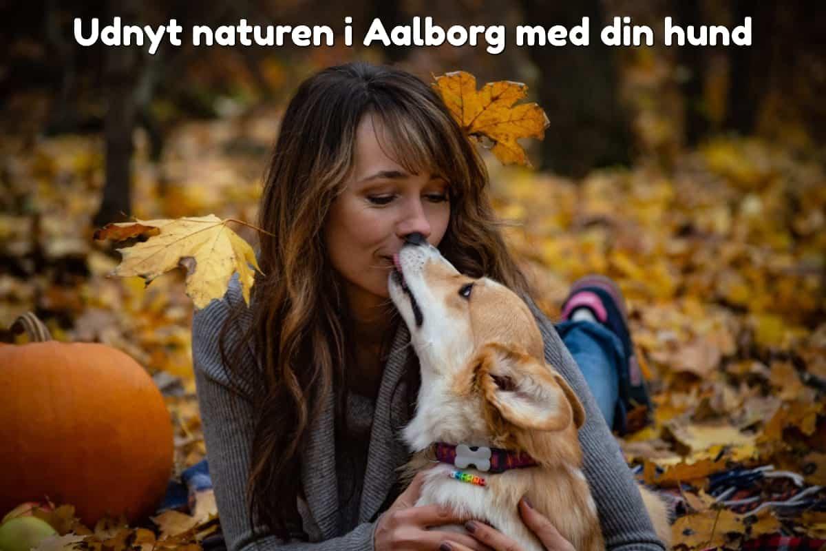 Udnyt naturen i Aalborg med din hund